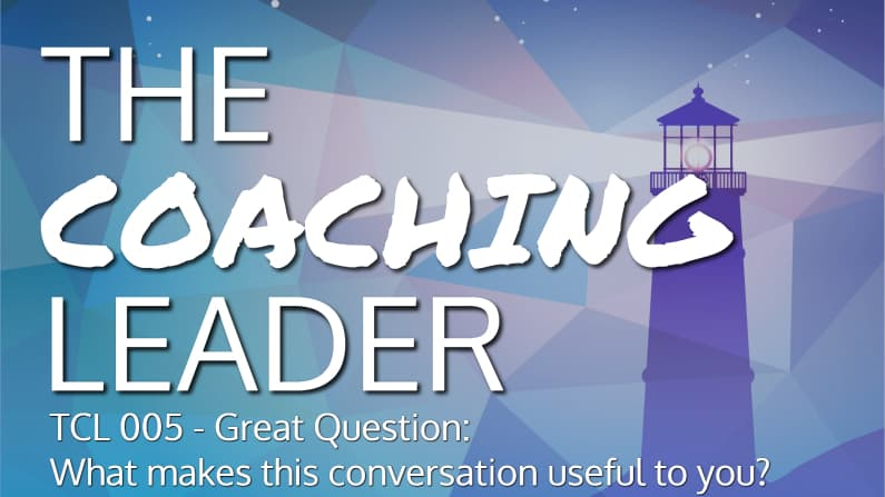 Great Question – What will make this conversation useful to you? (Podcast #5)