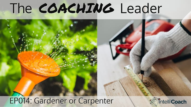 Gardener vs Carpenter (Podcast #14)